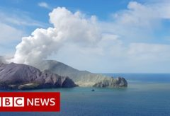New Zealand volcano: The moment after eruption hit – BBC News