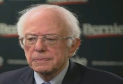 Sanders looks ahead to more diverse contests after New Hampshire victory