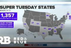 "Super Tuesday marks the ""beginning of congressional primary season"""